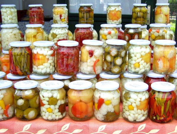 Workshop-Gezond-eten-fermenteren