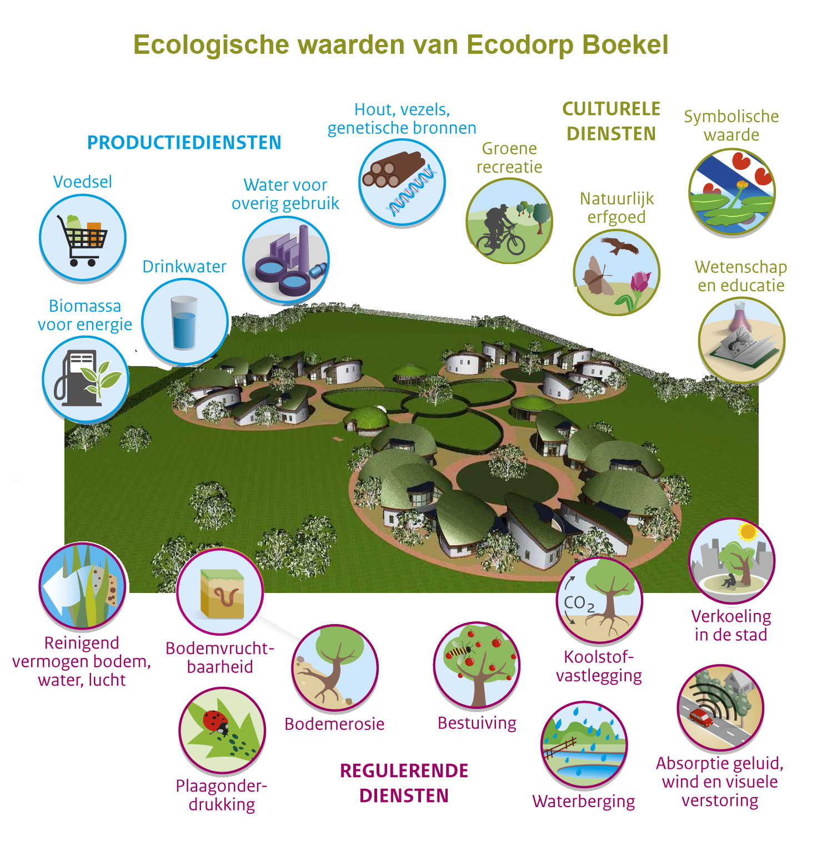 Ecologische waarde van Ecodorp Boekel