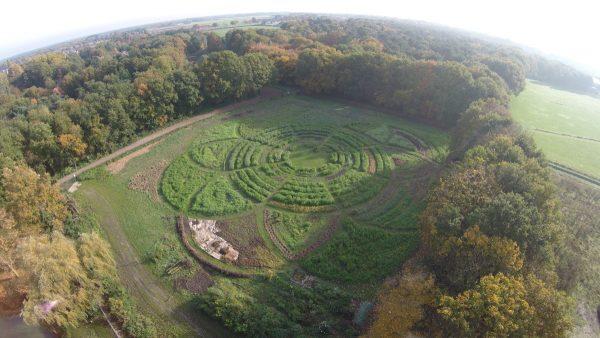 Klimaatadaptieve voedseltuin